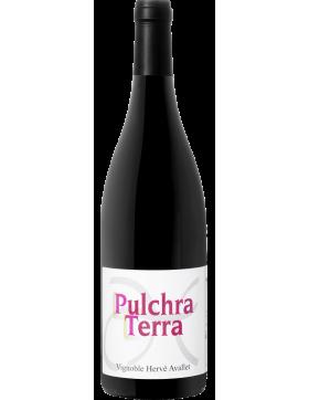 Pulcha Terra 2019