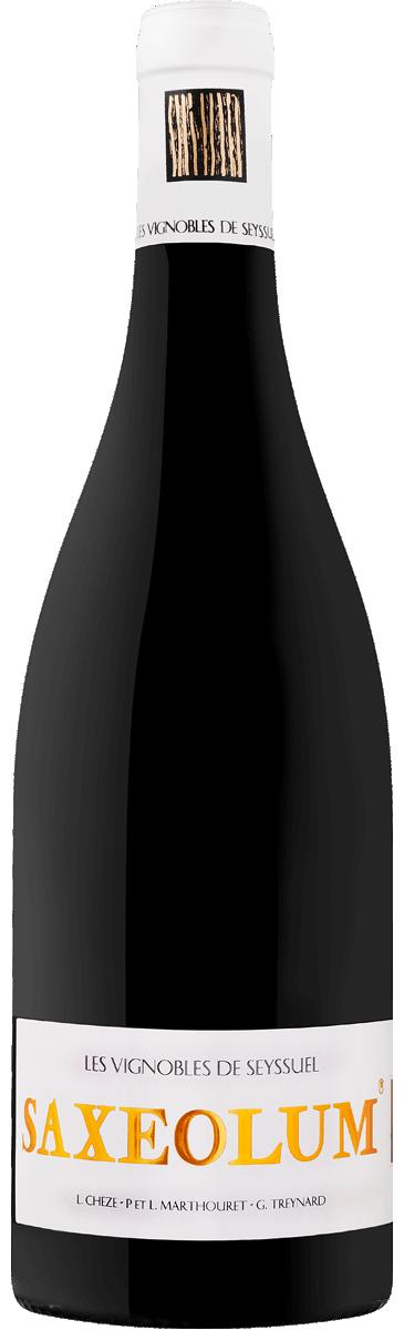 Saxeolum 2017