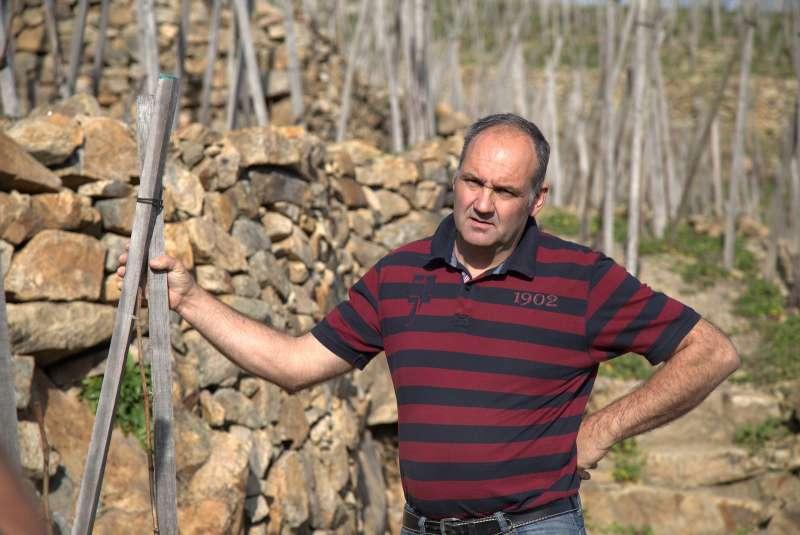Domaine Christophe Pichon, Vignoble de Seyssuel
